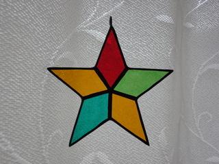クリスマス星 横.JPG